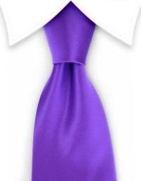 Purple Solid Tie  GentlemanJoe