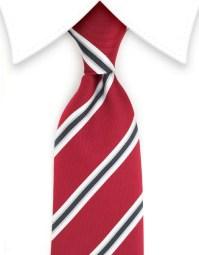 Striped Ties  GentlemanJoe