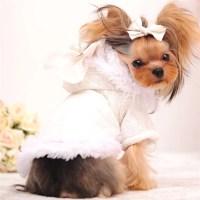 Mr Michael Girl Dog Clothes Winter Female Dog Coat Cute ...