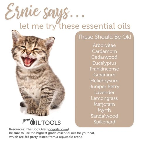 Essential oils for cats also  your oil tools rh youroiltools