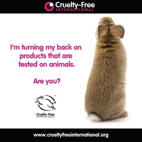 Choose Cruelty Free 4