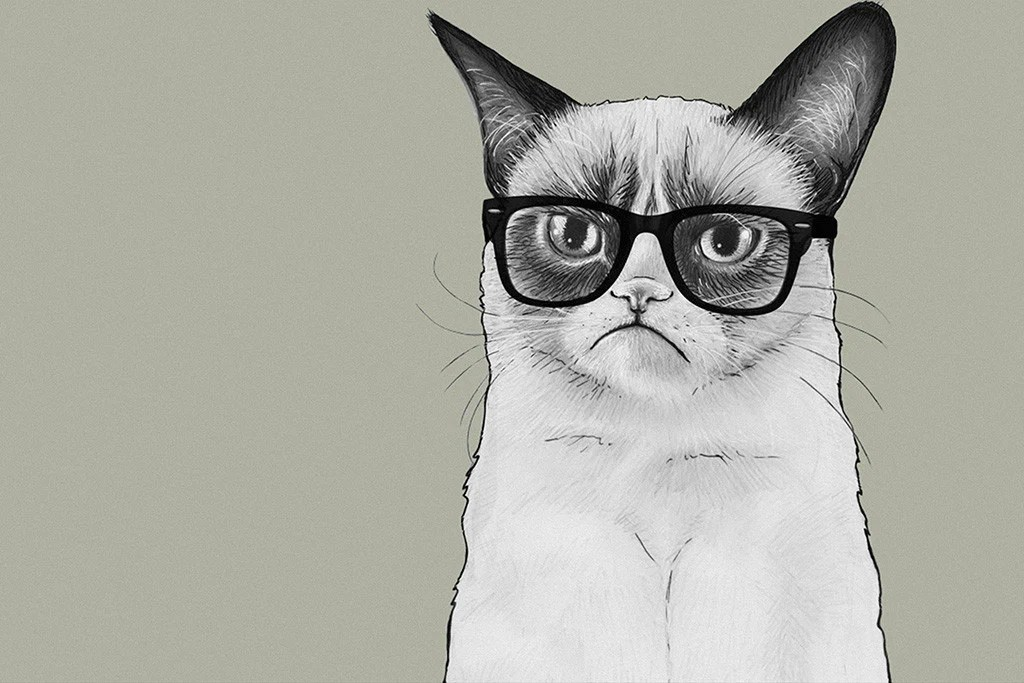Girl Minion Wallpaper Grumpy Cat Angry Kitten Tardar Sauce Glasses Poster My