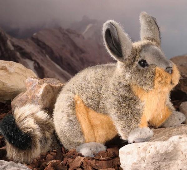 Viscacha Chinchilla by Kosen  25cm  The Bear Garden
