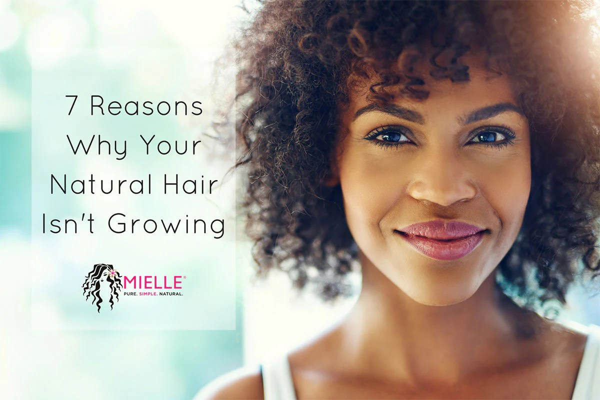 Hair Care Tips 7 Reasons Why Your Natural Hair Isn T Growing Mielle