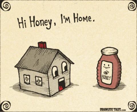 Hi Honey, I'm Home