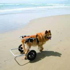 Wheel Chairs For Dogs Chair Sling Fabric Best Friend Mobility Wheelchairs  Super Pet