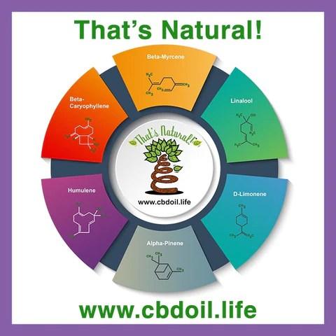 most trusted CBD, best rated CBD, entourage effect, most bioavailable CBD, hat's Natural terpene profile includes: beta-myrcene, linalool, d-limonene, alpha-pinene, humulene, beta-caryophyllene - more from Thats Natural at www.cbdoil.life, cbdoil.life, and www.thatsnatural.info - The Herb Bar Austin TX, Life Force Market