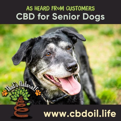 CBD for dogs, CBD for pets, Another example of a happy pet owner is a customer with two 20-year old dogs (that's 140 years in human years!). They struggled with arthritis andthey found it harder to do most things like getting around to be with their owner or making it out to handle their business. After trying our That's Natural Pet CBD Hemp oil they are walking around with no problem - the owner was so grateful to see her dogs feel better with less pain and have a pep in there step!