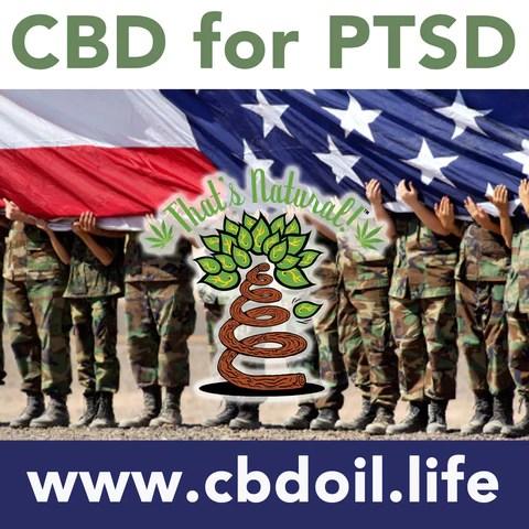 cbd for ptsd, cbd for tbi, cbd for veterans, VA, research on CBD for PTSD, CBD from That's Natural full spectrum phytocannabinoids entourage effect - Precious plant compounds in That's Natural full spectrum CBD-rich hemp oil include other cannabinoids besides CBD (CBDA, CBC, CBG, CBN), terpenes (beta-myrcene, linalool, d-limonene, alpha-pinene, humulene, beta-caryophyllene) and polyphenols - See more about safe and effective hemp-derived CBD oil from Thats Natural at www.cbdoil.life and cbdoil.life and www.thatsnatural.info - legal hemp CBD, legal in all 50 states