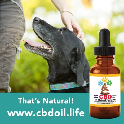 CBD for Pets, Best-Rated CBD for pets - hemp-derived CBD, legal in all 50 States, That's Natural CBD for internal use - legal hemp CBD Entourage Effect - CBD Oil Drops (250mg CBD per 1 oz. Bottle) - Our most simple product containing our proprietary CBD-rich hemp oil, organic grape seed oil, and organic hemp seed oil. This is the product that can also be taken internally, or applied topically! Find online at www.cbdoill.life, www.cbdoil.life, thatsnatural.info, www.thatsnatural.info and at Thats Natural Life Force Market!  CBD from hemp from Thats Natural, CBD for Pets