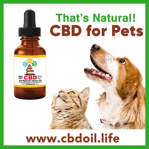 most trusted CBD for pets, Best-rated CBD for pets - Entourage Effect ,That's Natural CBD for pets, CBD for dogs, CBD for animals, CBD for cats, legal CBD for pets. CBD for pet anxiety, CBD for pet pain, full spectrum Thats Natural CBD, CBD, CBDA, CBC, CBG, CBN, CBD oil for pets at www.cbdoil.life, cbdoil.life, thatsnatural.info, can you use CBD for pets?