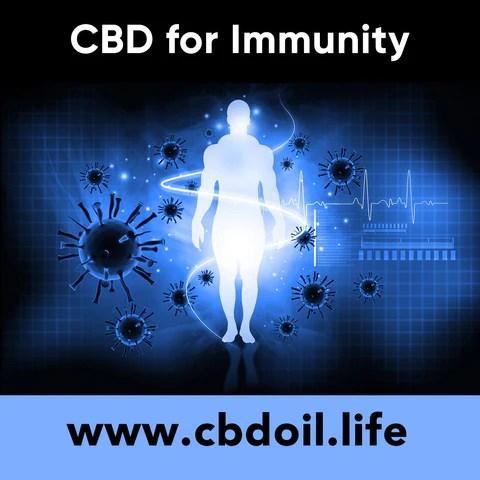 CBD for immunity, CBD for coronavirus, CBD for corona virus - legal hemp CBD, CBDA oil, hemp-derived CBD from That's Natural at cbdoil.life and www.cbdoil.life - Thats Natural Entourage Effect, CBD creme, CBD cream, CBD lotion, CBD massage oil, CBD face, CBD muscle rub, CBD muscle jelly, topical CBD products, full spectrum topical CBD products, CBD salve, CBD balm - legal in all 50 States  www.thatsnatural.info, best rated CBD, CBD Distillery, Dr. Axe CBD, Alex Jones CBD, Washington's Reserve, CW Botanicals, CBD Distillery - Choose the most premium CBD with testimonials - Entourage Effect with Thats Natural