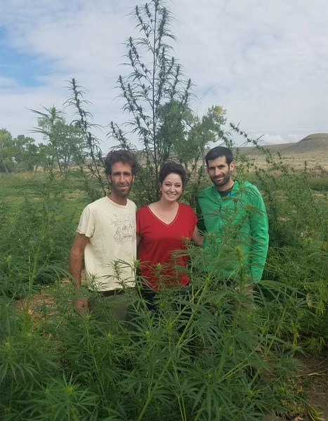 That's Natural CEO Tisha Casida in Delta, County Colorado with hemp farmers, hemp-derived CBD from That's Natural at cbdoil.life and www.cbdoil.life - Thats Natural legal in all 50 States.  Truly full spectrum CBD products, topical products, all natural CBD oil, superior cannabinoid and terpene rich products