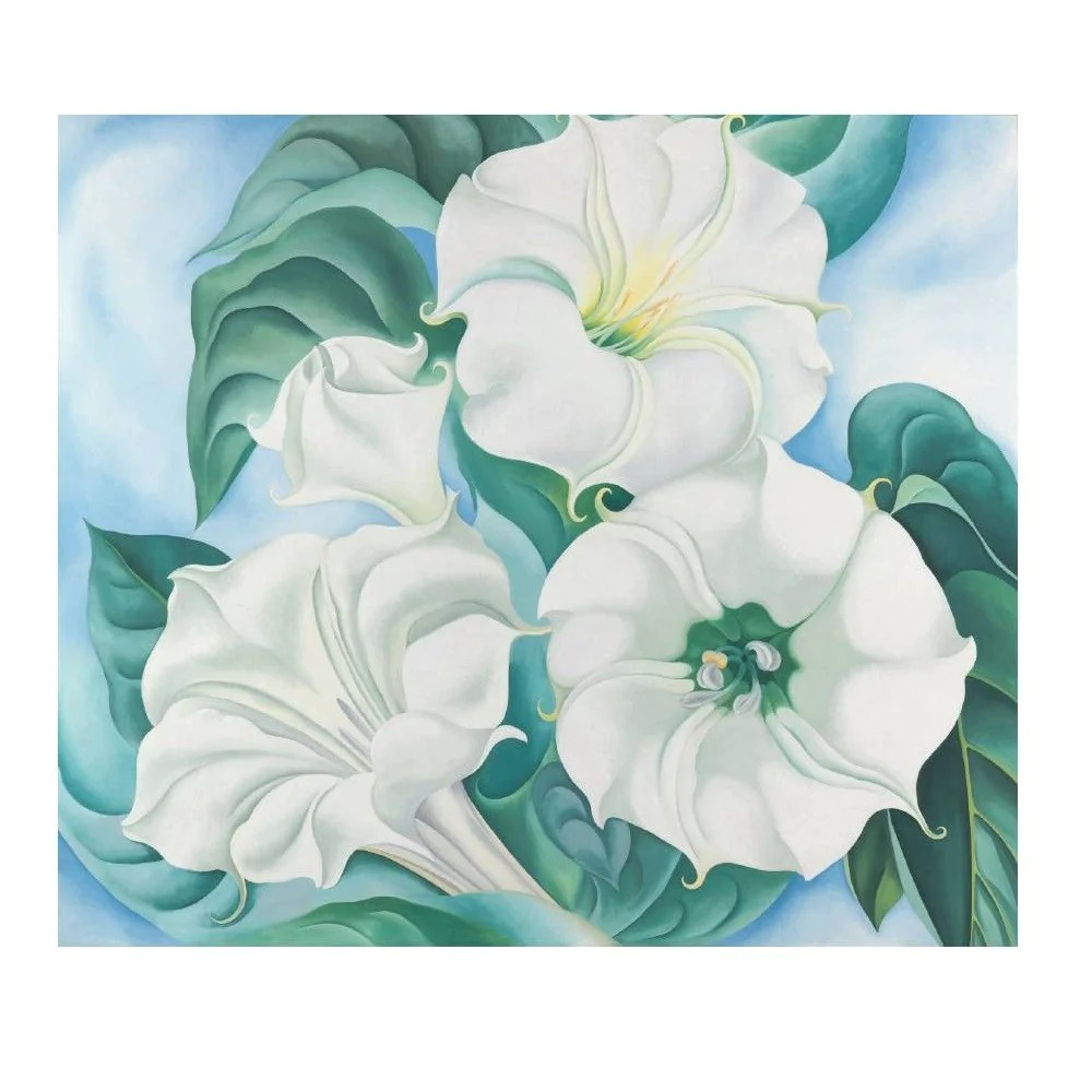 Georgia O'Keeffe 'Jimson Weed' Boxed Note Cards
