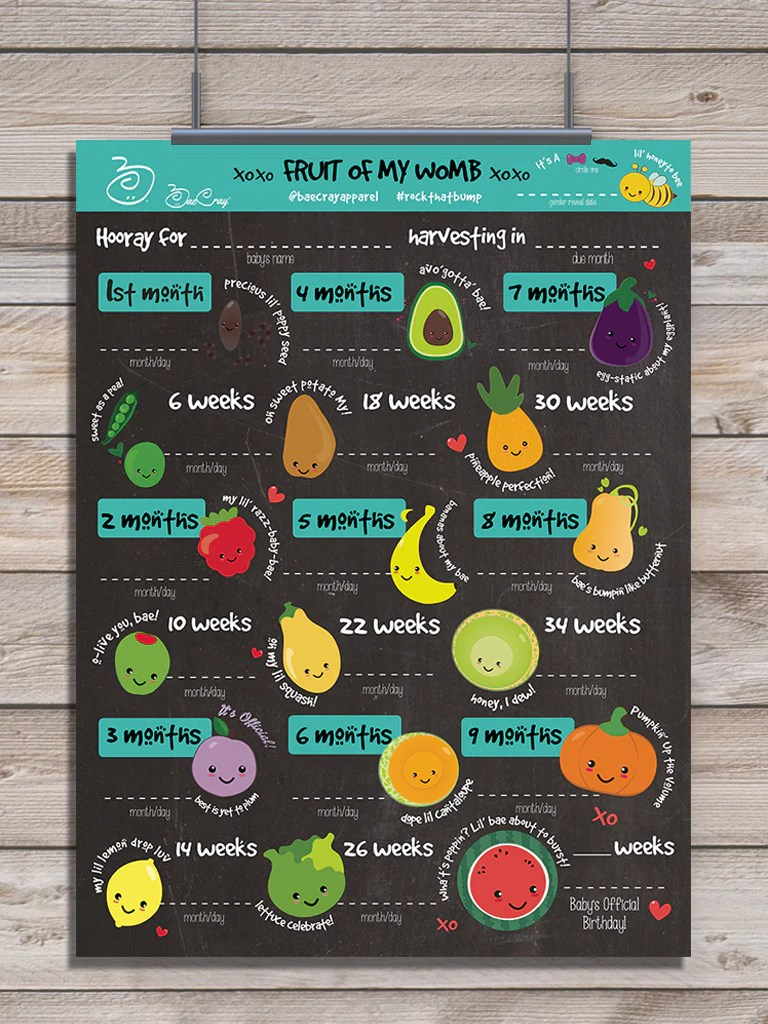 Digital download fruit of my womb how big is baby pregnancy stages timeline also rh baecray