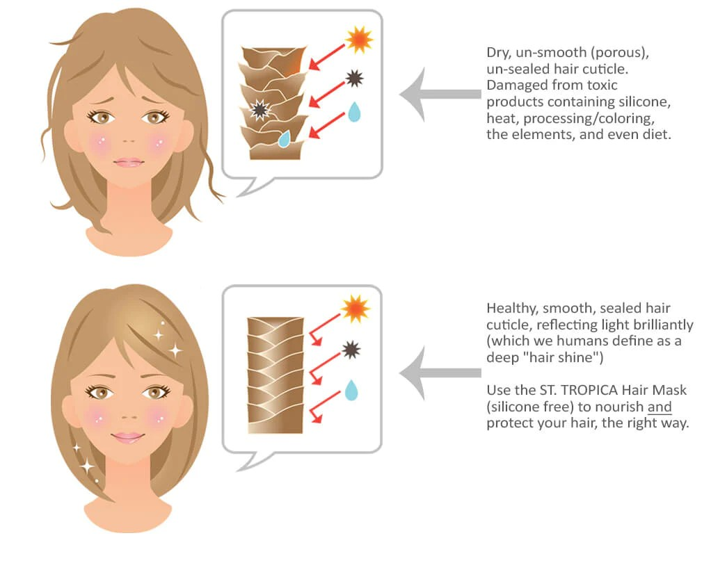 artificial shine what you need to know about silicone hair products hair root diagram hair damage diagram [ 1045 x 810 Pixel ]