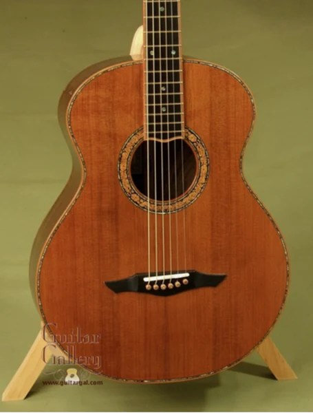 Petros Guitar Used Salvaged Redwood Top Tunnel 13