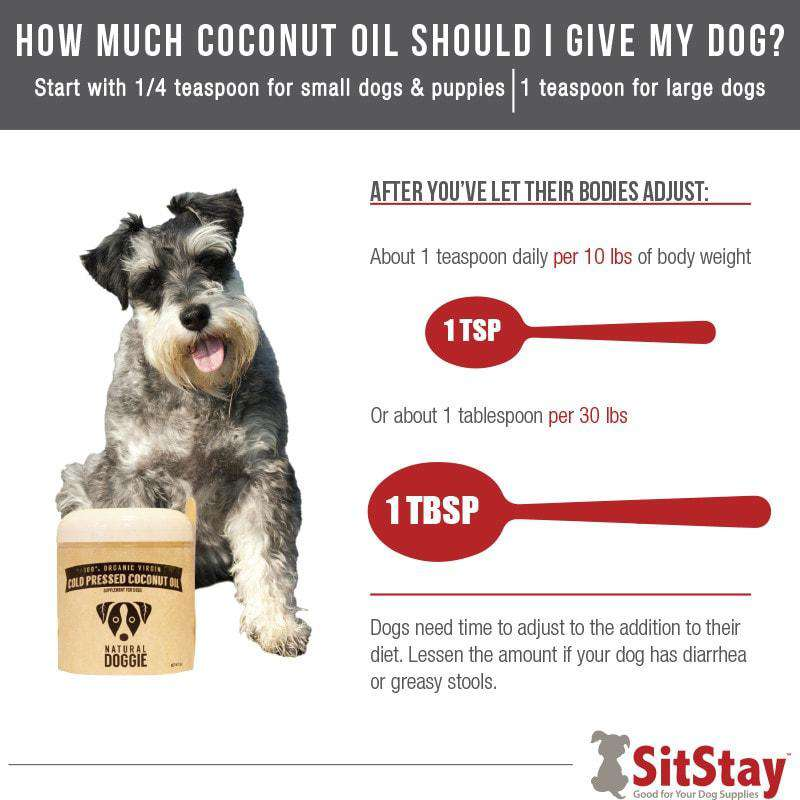 Organic Coconut Oil For Dogs - SitStay