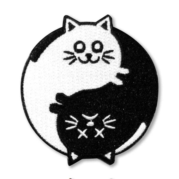 schrodinger s yin yang