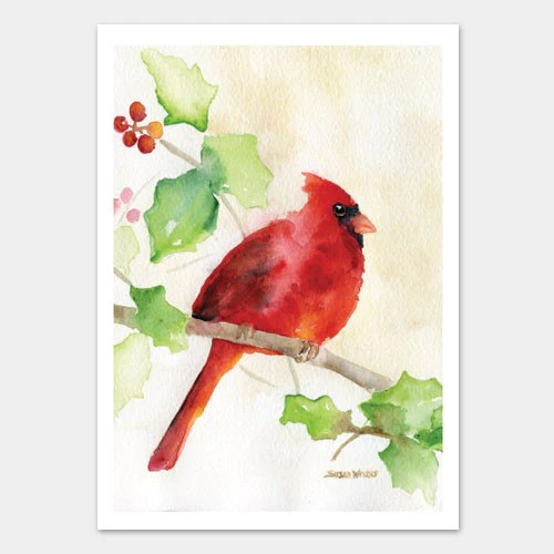 Cardinal And Holly Watercolor Christmas Card Set Susan