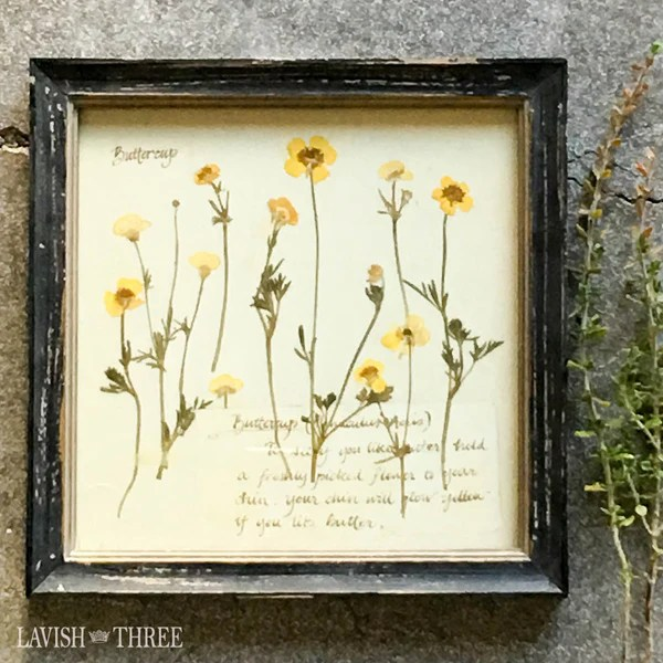 Sunny Buttercup Floral Framed Botanical Print Cottage Chic