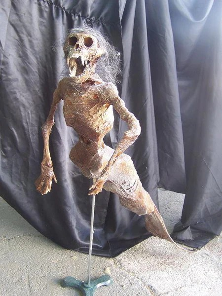 4 Ft Feejee Mermaid  Dapper Cadaver Props