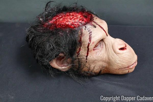 Monkey Brains Head Prop  Dapper Cadaver Props