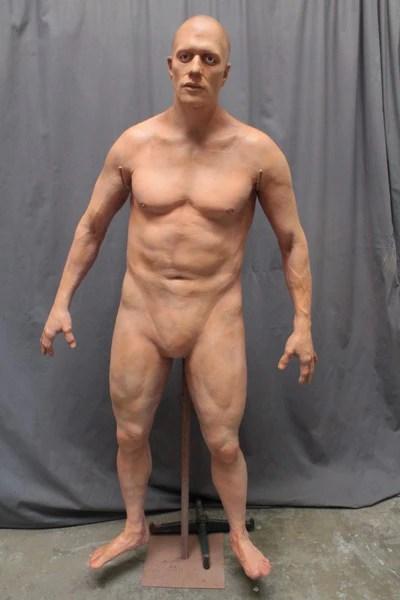 David Full Body  Dapper Cadaver Props