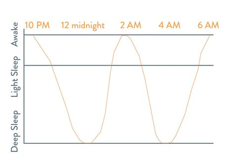 Adult sleep cycle how you through the night between rem and deep also your baby   newborn nested bean inc rh nestedbean