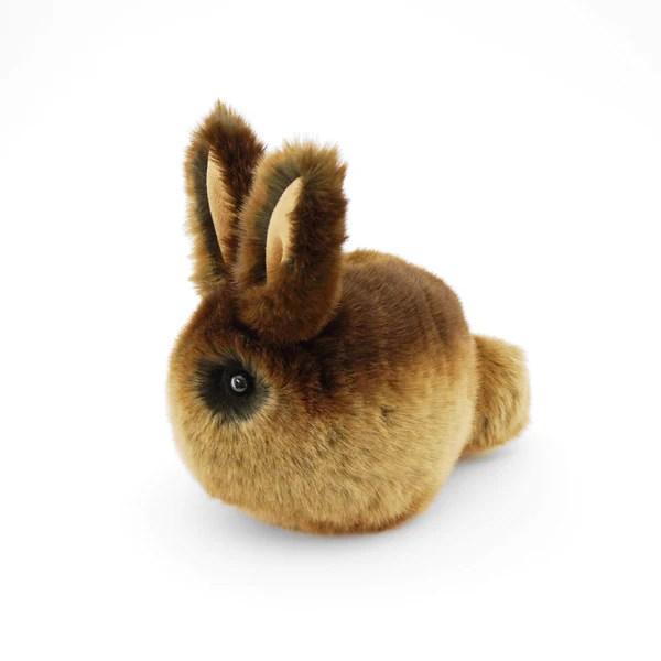 cinnamon the brown bunny