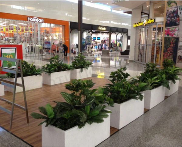 Artificial Plants For Planter Boxes At Gloria Jeans Cafe Inside Shopping Center Ellenbrook WA