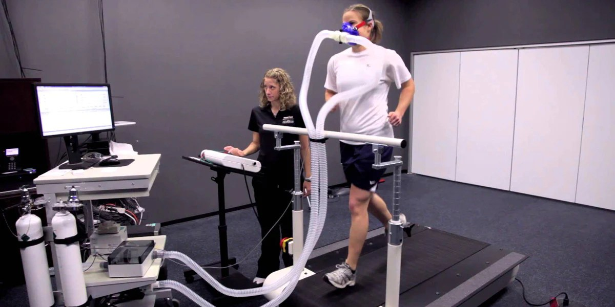 Physical Fitness Testing and Assessment – Sundried Activewear