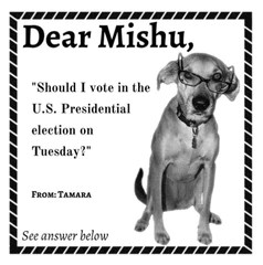 DearMishu, Should I vote in the US Presidential election?