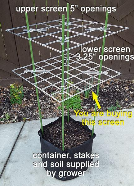 Primary Screen for a plant ScrOG growing system