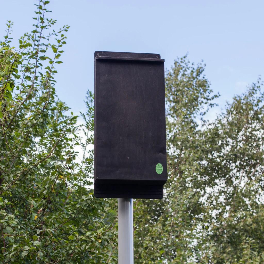 pole mounted bat box  [ 1024 x 1024 Pixel ]
