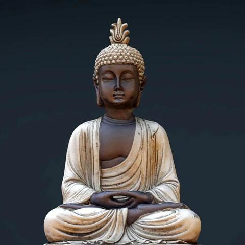 gautam buddha the enlightened