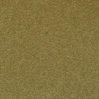Brintons Carpet Remnants Uk  Floor Matttroy