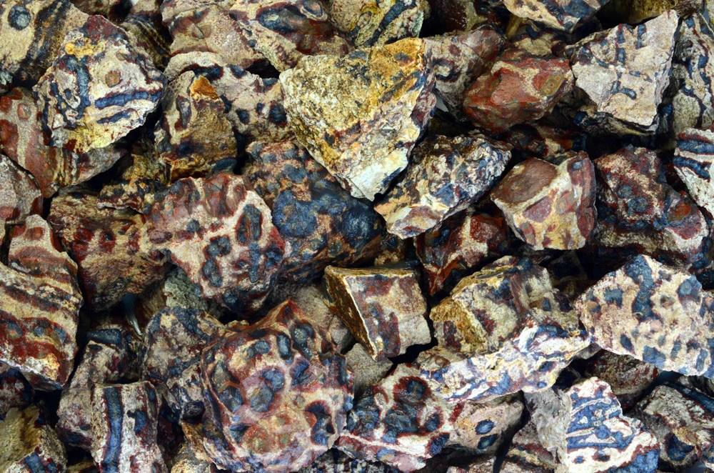 animal jasper rough stones
