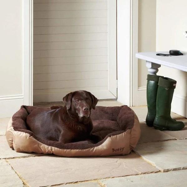 dog beds collars harnesses bowls