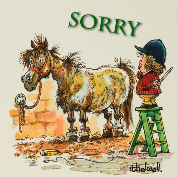 Horse Greeting Card With Sound Bad Haircut Sorry By