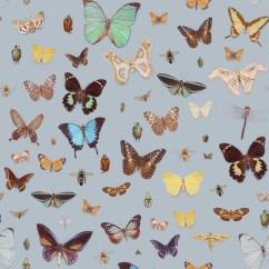 Roll About Kitchen Cart Design Stores Bugs And Butterflies Wallpaper – Ella Doran