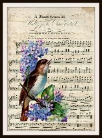 Vintage Art Print Bird on Ephemera Music Page, Print Wall ...