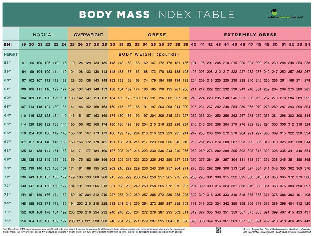 bmi poster bmi chart poster body mass index poster 18 x 24 poster laminated