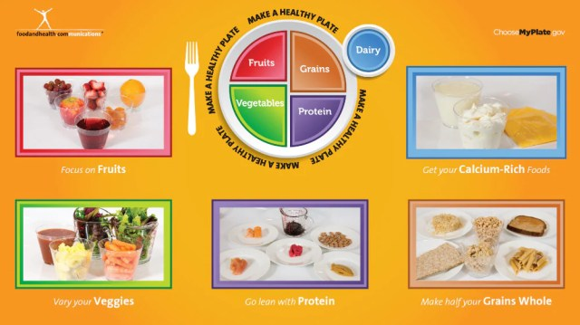 Digital My Plate Poster and MyPlate Foods - Digital 110 Picture Show on Flash Drive - Nutrition Education Store