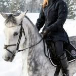 Wintertide Parka Equizone Online