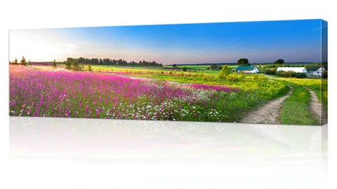 panoramic canvas harvey norman