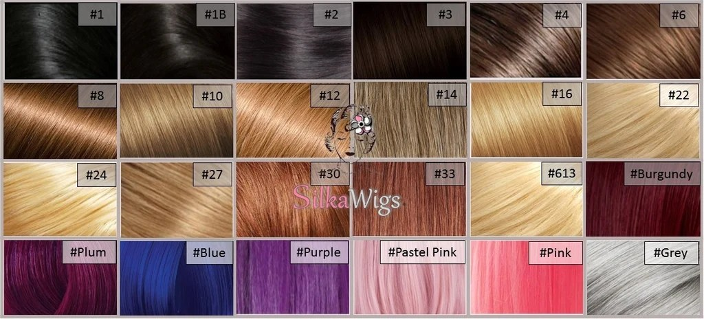 Lace Wigs Color Chart Homeschoolingforfree