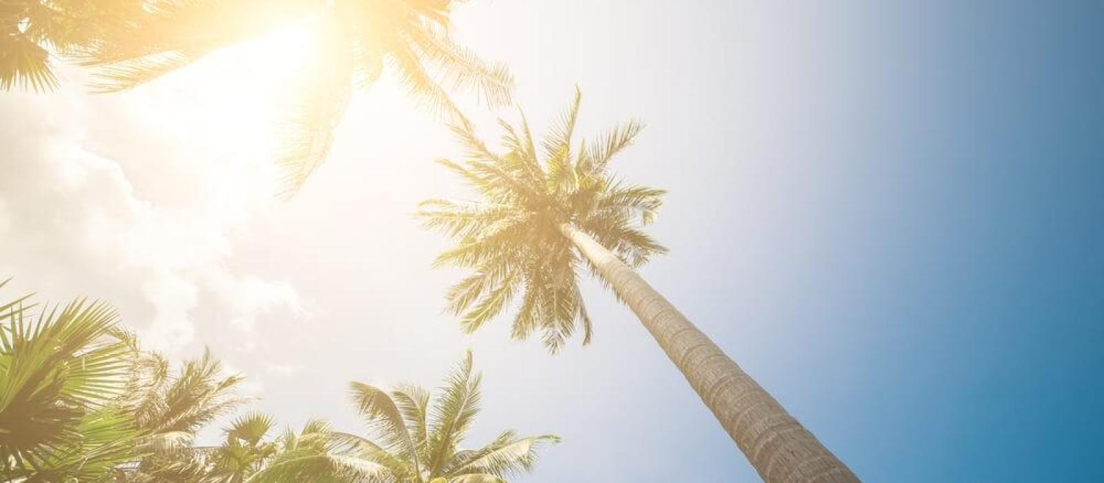 affordable patio designs for your backyard. – mypatiodesign