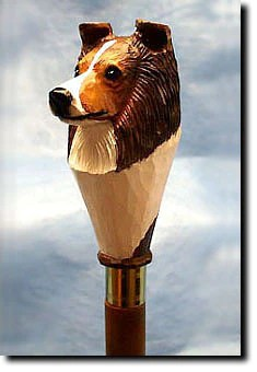 walking stick chair heavy duty lafuma pop up shetland sheepdog - head mounted on 36 inch birch wood walkingsticksandcane.com