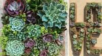 10 Creative Succulent Garden Ideas